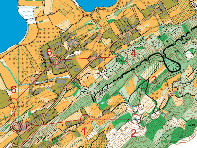 Mappa di orienteering